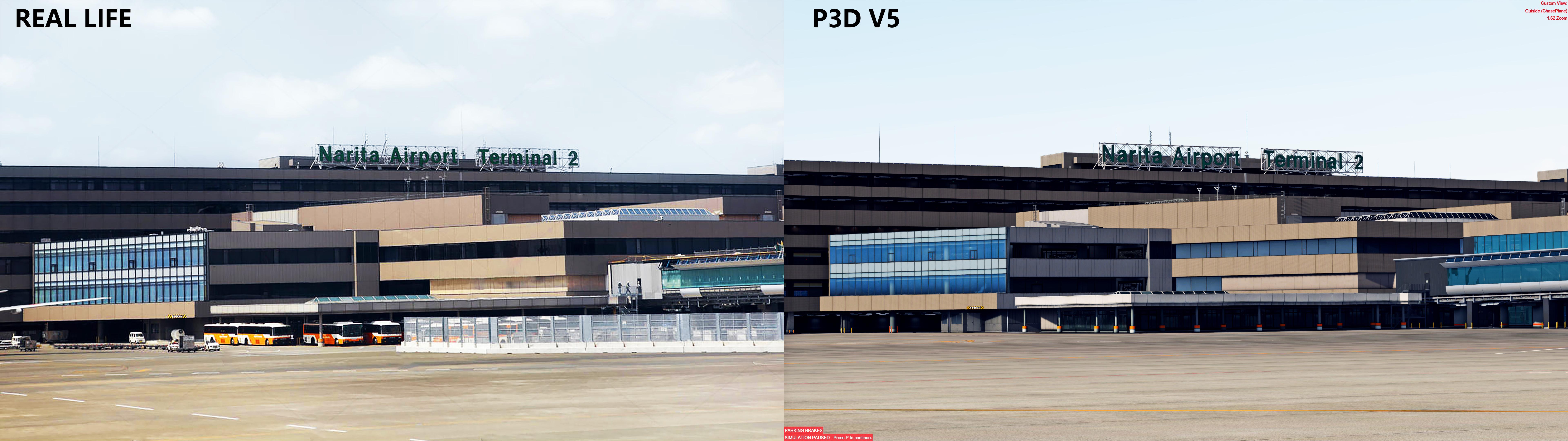 DB1.jpg