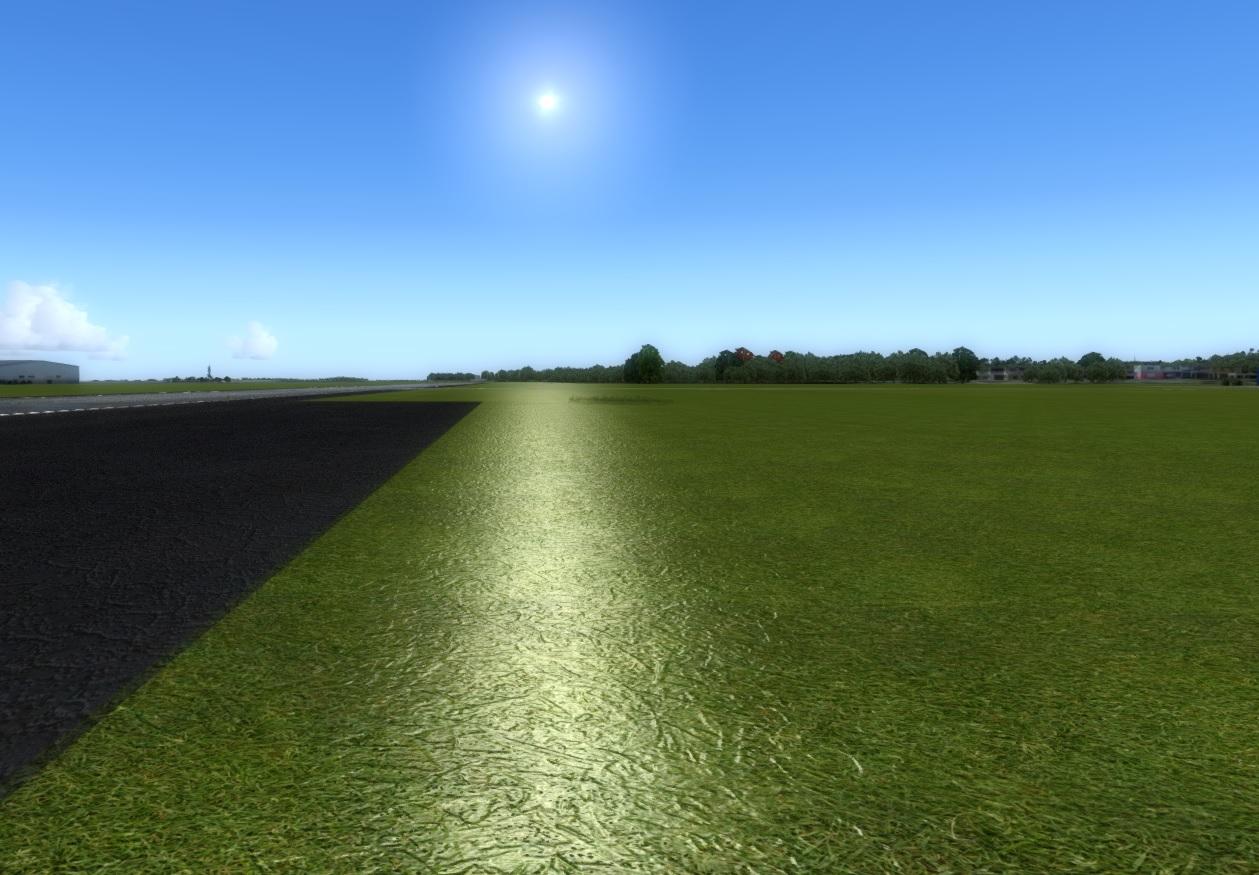 Grass HD.jpg